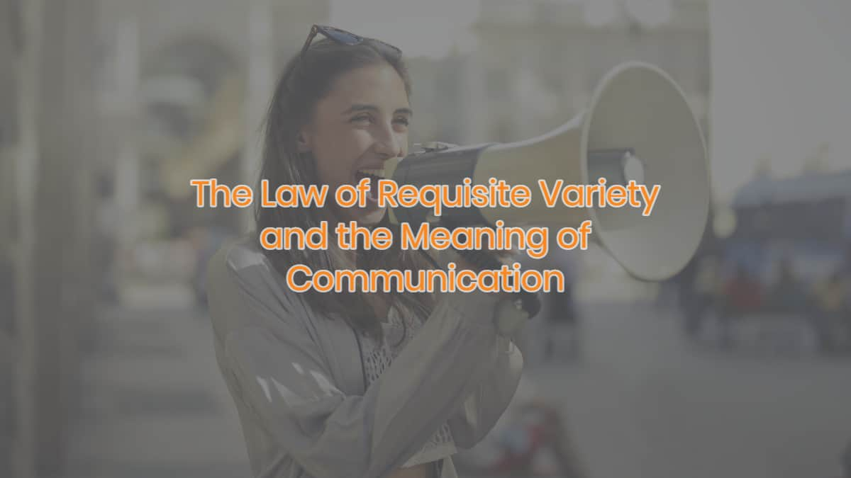The Law of Requisite Variety and the Meaning of Communication