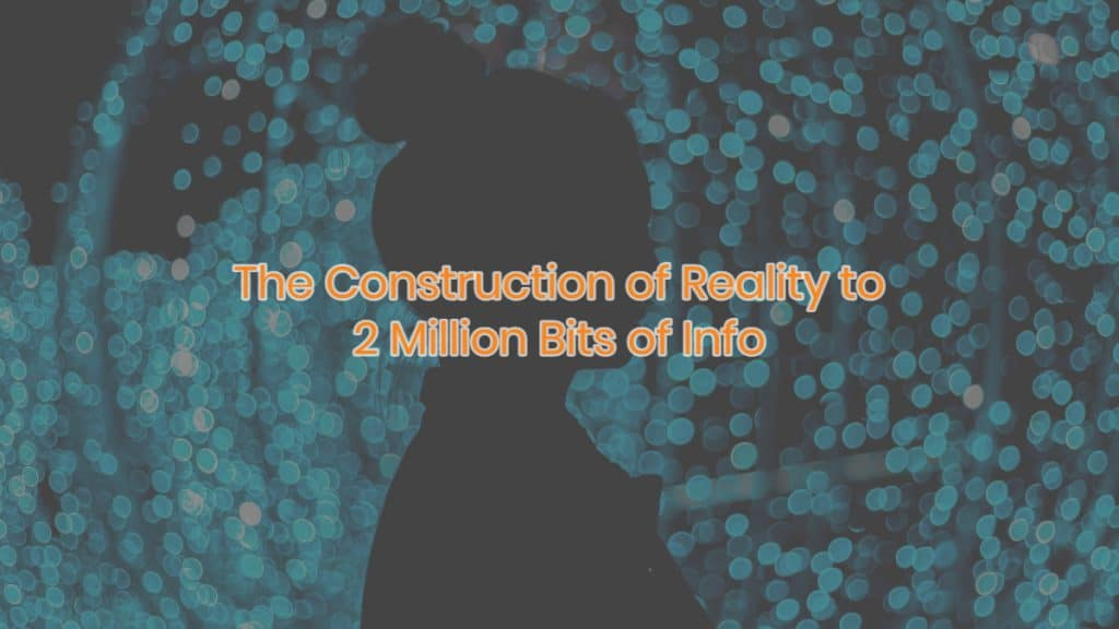 The Construction of Reality to 2 Million Bits of Info